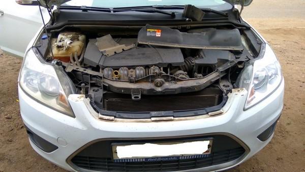 Установка сеток в решетку и бампер Ford Focus 2